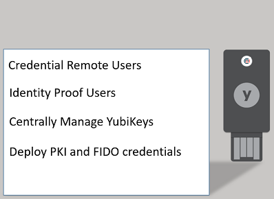 Extend YubiKey Manager capabilities